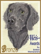 Weis-Awards Bronze